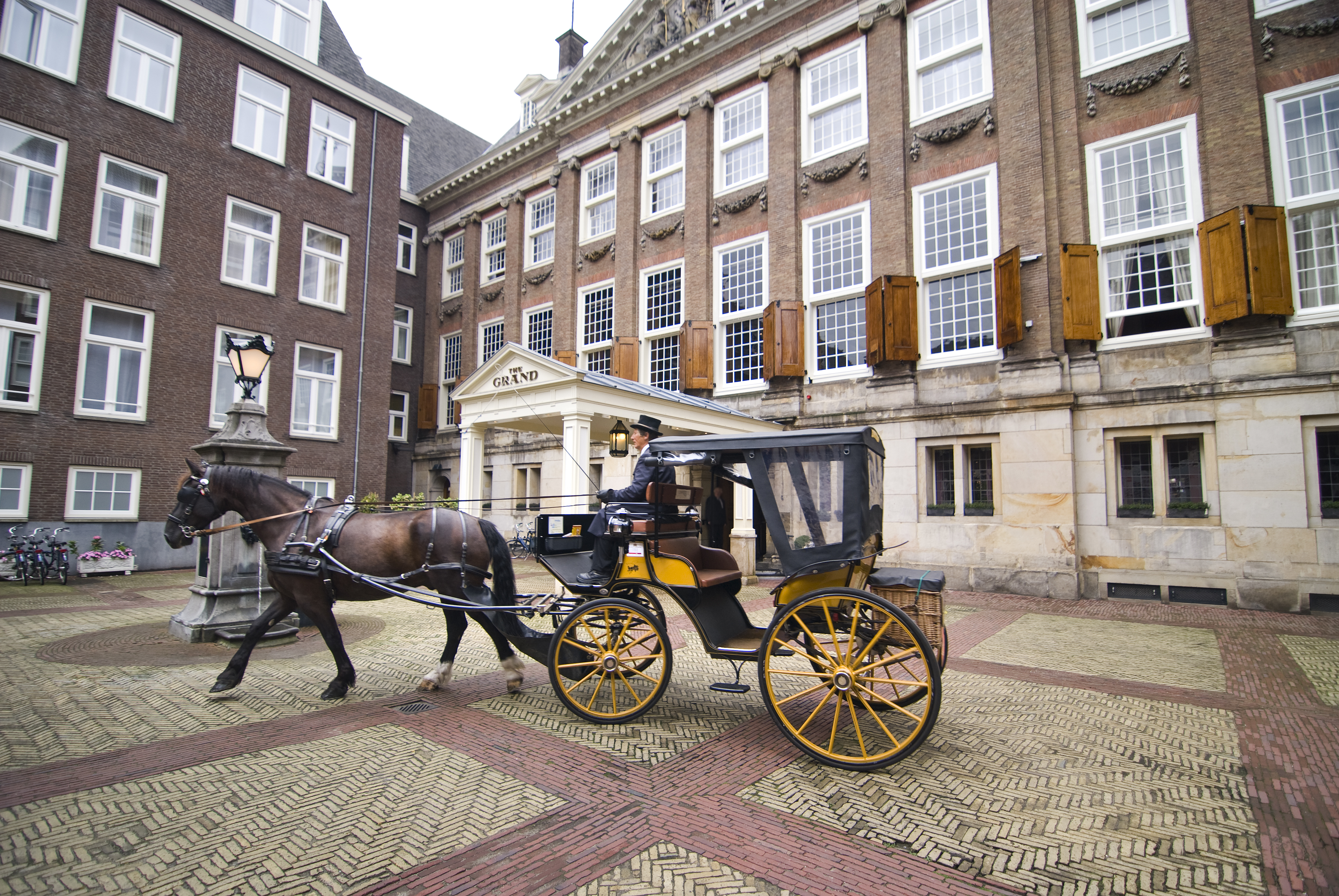02. Horse Carriage Experience